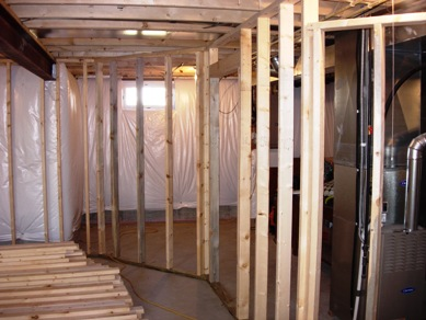 Basement Kitchen Ideas on With 2 Divisions   Ohio Basements  And Encore Kitchen And Bathrooms